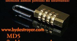 Wordpress MD5 123456