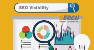 SEO Visibility Arama Görünürlüğü Kaybını Önlemek