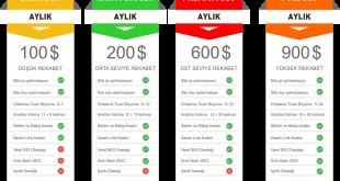 Seo fiyatları