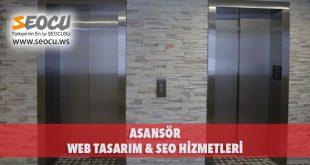 Asansör Web Tasarım & Seo Hizmetleri