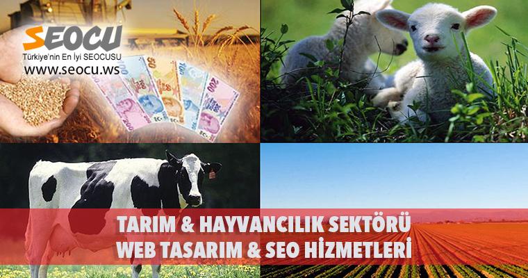 Tarım & Hayvancılık Sektörü Web Tasarım & Seo Hizmetleri