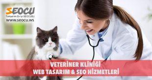 Veteriner Kliniği Web Tasarım & Seo Hizmetleri